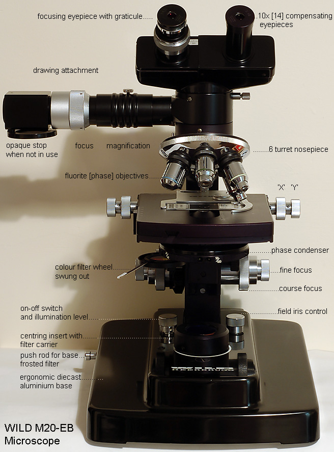 wildm20eblg mic uk wild m20 eb microscope  at n-0.co