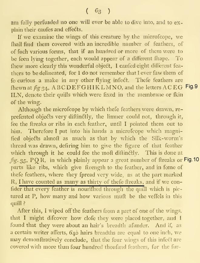 Example essay on anton van leeuwenhoek
