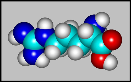 How to Model a Molecule Using Avogadro Software forecasting